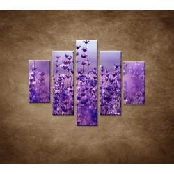 Obrazy na stenu - Levanduľa - 5dielny 100x80cm