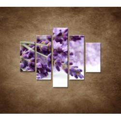 Obrazy na stenu - Kvet levandule - 5dielny 100x80cm
