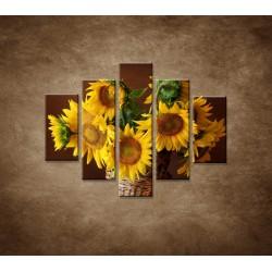 Obrazy na stenu - Slnečnice - 5dielny 100x80cm