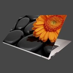 Nálepka na notebook - Oranžová gerbera na kameňoch