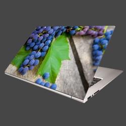 Nálepka na notebook - Modré hrozno