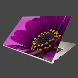 Nálepka na notebook - Fialová gerbera