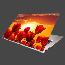 Nálepka na notebook - Západ slnka nad tulipánmi