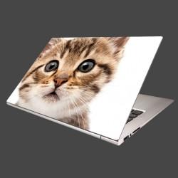 Nálepka na notebook - Mačiatko