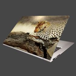 Nálepka na notebook - Odpočívajúci leopard