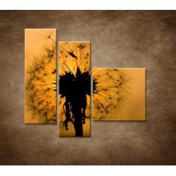 Obrazy na stenu - Makro - Púpava - 3dielny 110x90cm