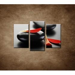 Obrazy na stenu - Čierny kameň s červeným lupeňom - 3dielny 75x50cm