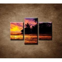 Obrazy na stenu - Farebná príroda - 3dielny 75x50cm
