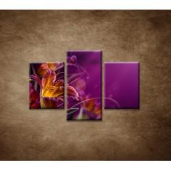 Obrazy na stenu - Fialové kvety - 3dielny 90x60cm