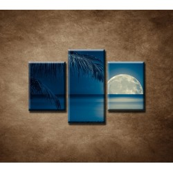 Obrazy na stenu - More v noci - 3dielny 90x60cm