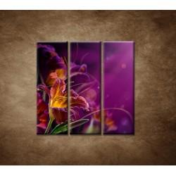 Obrazy na stenu - Fialové kvety - 3dielny 90x90cm