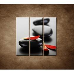 Obrazy na stenu - Čierny kameň s červeným lupeňom - 3dielny 90x90cm