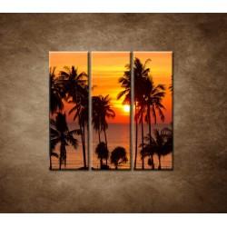 Obrazy na stenu - Západ slnka s palmami - 3dielny 90x90cm