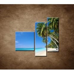 Obrazy na stenu - Pláž s palmami - 3dielny 110x90cm