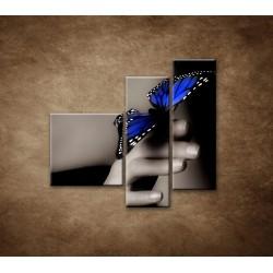 Obrazy na stenu - Modrý motýľ - 3dielny 110x90cm