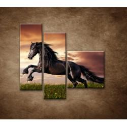 Obrazy na stenu - Čierny kôň - 3dielny 110x90cm