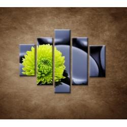 Obrazy na stenu - Žlto-zelený kvet - 5dielny 100x80cm