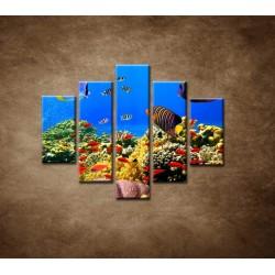 Obrazy na stenu - Podmorský svet - 5dielny 100x80cm