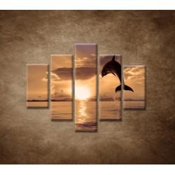 Obrazy na stenu - Skákajúci delfín - 5dielny 100x80cm
