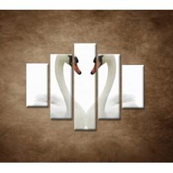 Obrazy na stenu - Labute - 5dielny 100x80cm