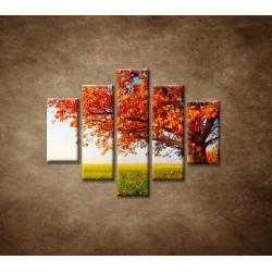 Obrazy na stenu - Jesenný dub - 5dielny 100x80cm
