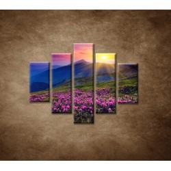 Obrazy na stenu - Západ slnka - 5dielny 100x80cm