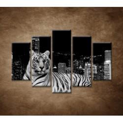 Obrazy na stenu - Mestský tiger - 5dielny 150x100cm