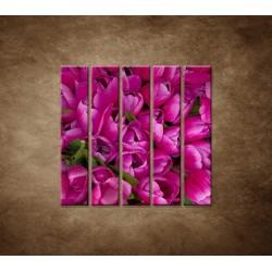 Krásne tulipány - 5dielny 100x100cm