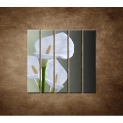 Tri biele kaly - 5dielny 100x100cm