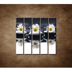 Obrazy na stenu - Tri sedmokrásky - 5dielny 100x100cm