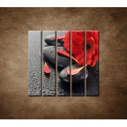 Obrazy na stenu - Červená gerbera a kamene - 5dielny 100x100cm