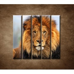 Obrazy na stenu - Leví kráľ - 5dielny 100x100cm