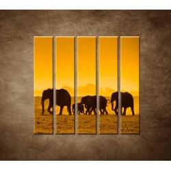 Obrazy na stenu - Slonia rodinka - 5dielny 100x100cm