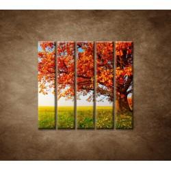 Obrazy na stenu - Jesenný dub - 5dielny 100x100cm