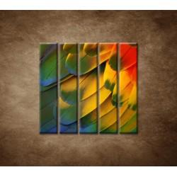 Obrazy na stenu - Farebné perie - 5dielny 100x100cm