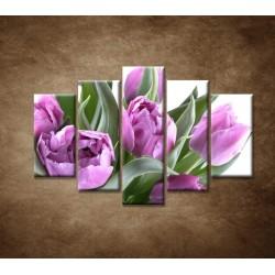 Obrazy na stenu - Nežné tulipány - 5dielny 150x100cm