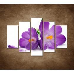 Obrazy na stenu - Krokus - 5dielny 150x100cm