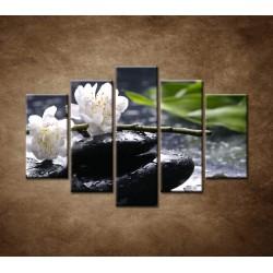 Obrazy na stenu - Sakura na kameni - 5dielny 150x100cm