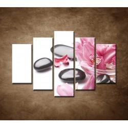 Obrazy na stenu - Kamene a kvety na bielom pozadí - 5dielny 150x100cm