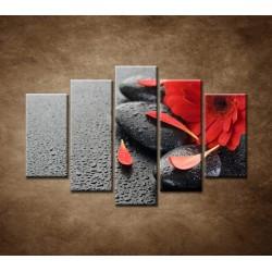 Obrazy na stenu - Červená gerbera a kamene - 5dielny 150x100cm