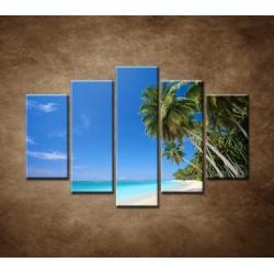 Obrazy na stenu - Pláž s palmami - 5dielny 150x100cm