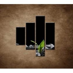 Obrazy na stenu - Čierne kamene a bambus - 4dielny 80x90cm