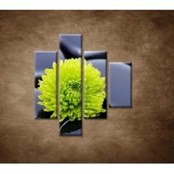 Obrazy na stenu - Žlto-zelený kvet - 4dielny 80x90cm