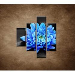 Obrazy na stenu - Modrý kvet na kameňoch - 4dielny 80x90cm