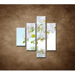 Obrazy na stenu - Biela orchidea nad hladinou - 4dielny 80x90cm