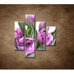 Obrazy na stenu - Nežné tulipány - 4dielny 80x90cm