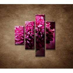 Obrazy na stenu - Kvetinové pozadie - 4dielny 80x90cm