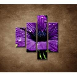 Obrazy na stenu - Fialový kvet - 4dielny 80x90cm
