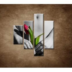 Obrazy na stenu - Dievča s tulipánom - 4dielny 80x90cm