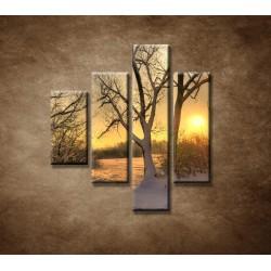 Obrazy na stenu - Krajina v zime - 4dielny 80x90cm